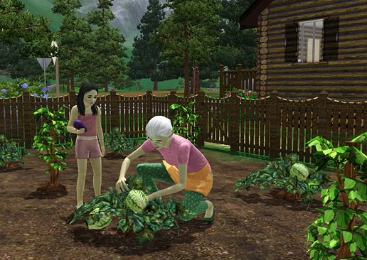 http://ru.store.thesims3.com/content/images/HiddenSprings/HiddenSprings11.jpg